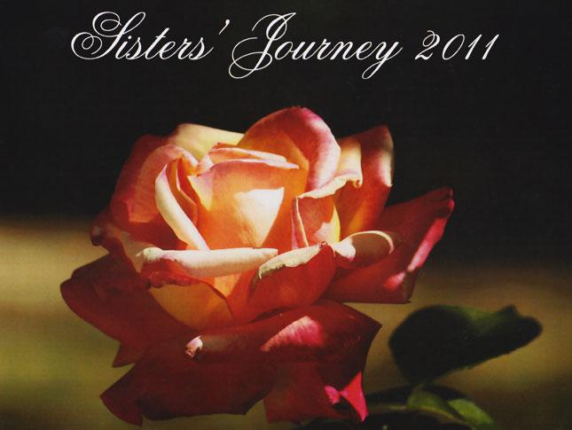 2011 Calendar Image