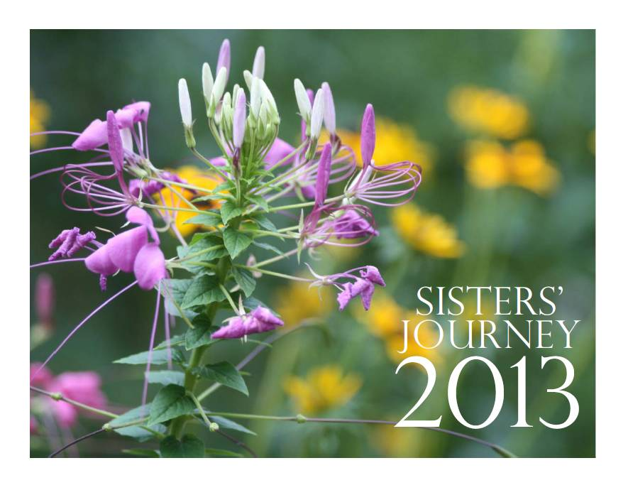 2013 Stories of Hope Calendar